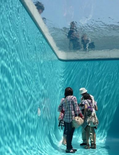 leandro elrich piscina