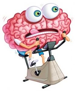 Cerebro en ejercicio-Internet