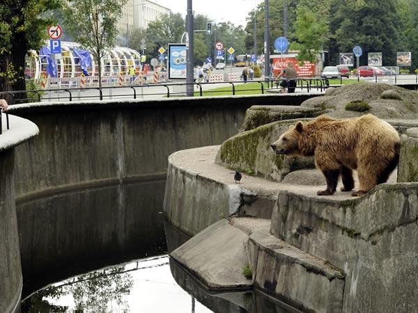 Varsovia para los curiosos III, ¿qué ver más allá?