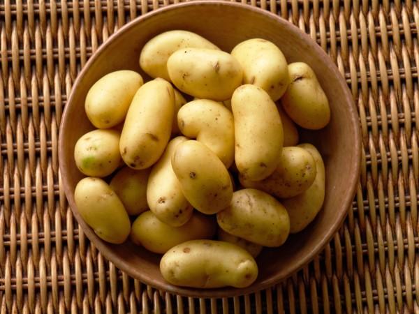 las patatas no engordan
